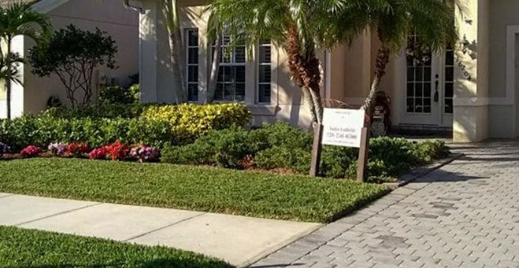 A lawn that has been serviced by Leo Garden Care. The grass is green and the home is surrounded by neatly trimmed shrubs and trees.