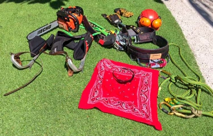 A collection of gear used by Leo Garden Care to trim trees such as a chainsaw and pulleys laid across a green lawn.